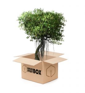 Plant a tree in Haiti Online Event Box